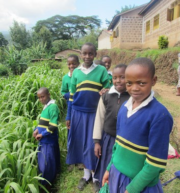 Moving Mountains Tanzania - Ng'aroni Primary School